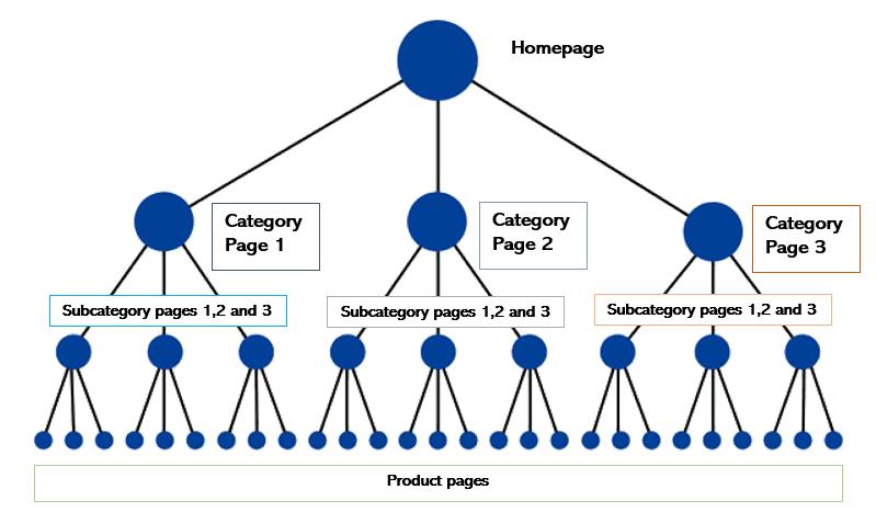 Website Architecture